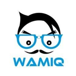 wamiq_hussain