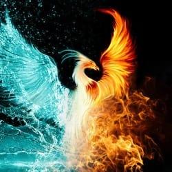 phoenixlogo01