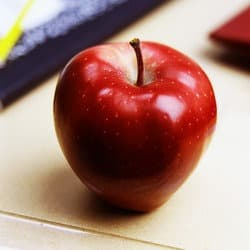 cjd_teacher