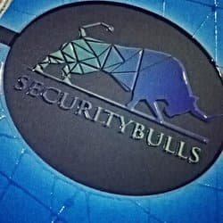 securitybulls