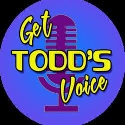 gettoddsvoice