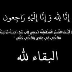 mohamed771