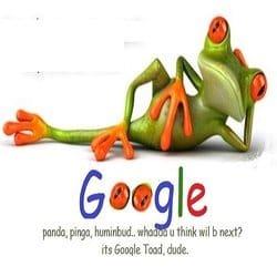 googletoad