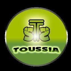 toufik1987