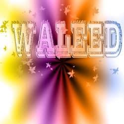 waleedahmed03