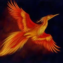 phoenix915