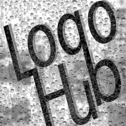 logo_hub11