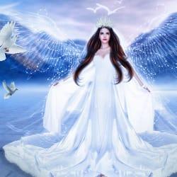 divinewellness
