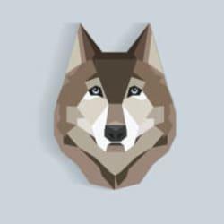 wordpresswolf