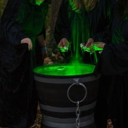 wiccancoven