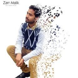 zarr_malik