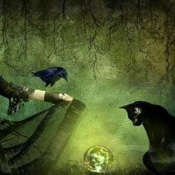 witch_kirki