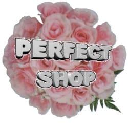 perfectshop