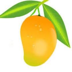mango_designs