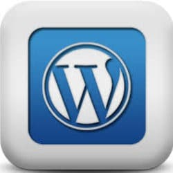 web_experrt