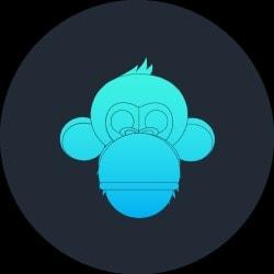 monkeyswing