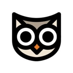 thebrandowl