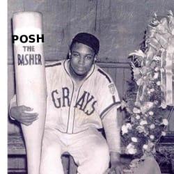 poshgibson