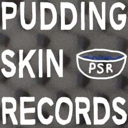 pudding_skin