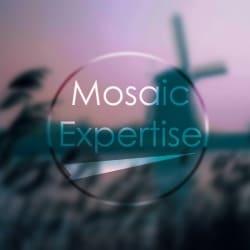 mosaicexpertise