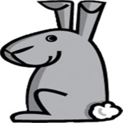 rabbitwebdesign