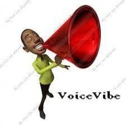 voicevibe