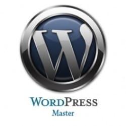 wordpressmastex