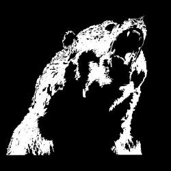 grizzlytech