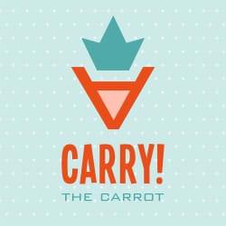 carry_design