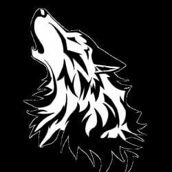 xxlonwolfxx12