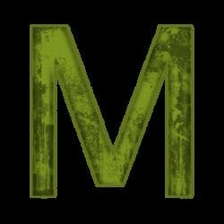 mickey129