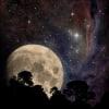 nocturnalrain