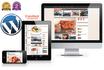 develop a User Friendly Wordpress website