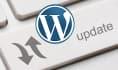update your Wordpress site