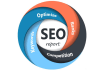 create a Custom SEO Report for any site