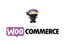 make your website in woocommerce and fix errors