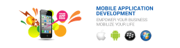 service to develop any platform mobile application