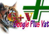 give you 50 Google Plus for your site or blog