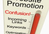 teach you practical guidelines on how to get your website promoted to acheived desired results