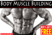 send You 200 Quality PLR Articles on Body Muscle Building