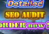 audit your website for guaranteed google page 1 placement
