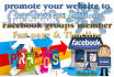 do social media marketing campaign to give website traffic