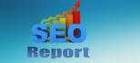 do basic SEO report for website