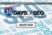 provide 30 Days of SEO