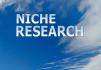do niche,domain research,Keyword Analysis HIGH searches