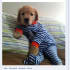 crop and resize your photos to be Facebook ready