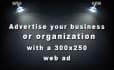 create a 300x250 px web ad