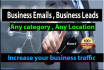 provide Fresh Business Leads , Business Emails