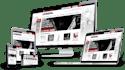 develop Professional WordPress website