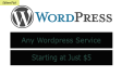 do any wordpress work